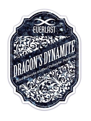 Everlast Dragons Dynamite