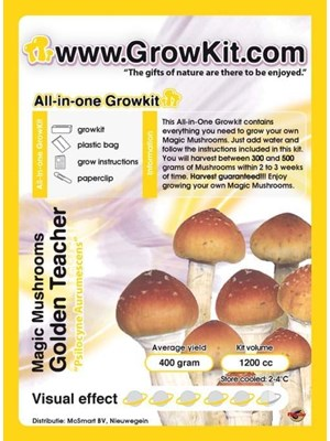 Golden Teacher Alles-In-1 Growkit